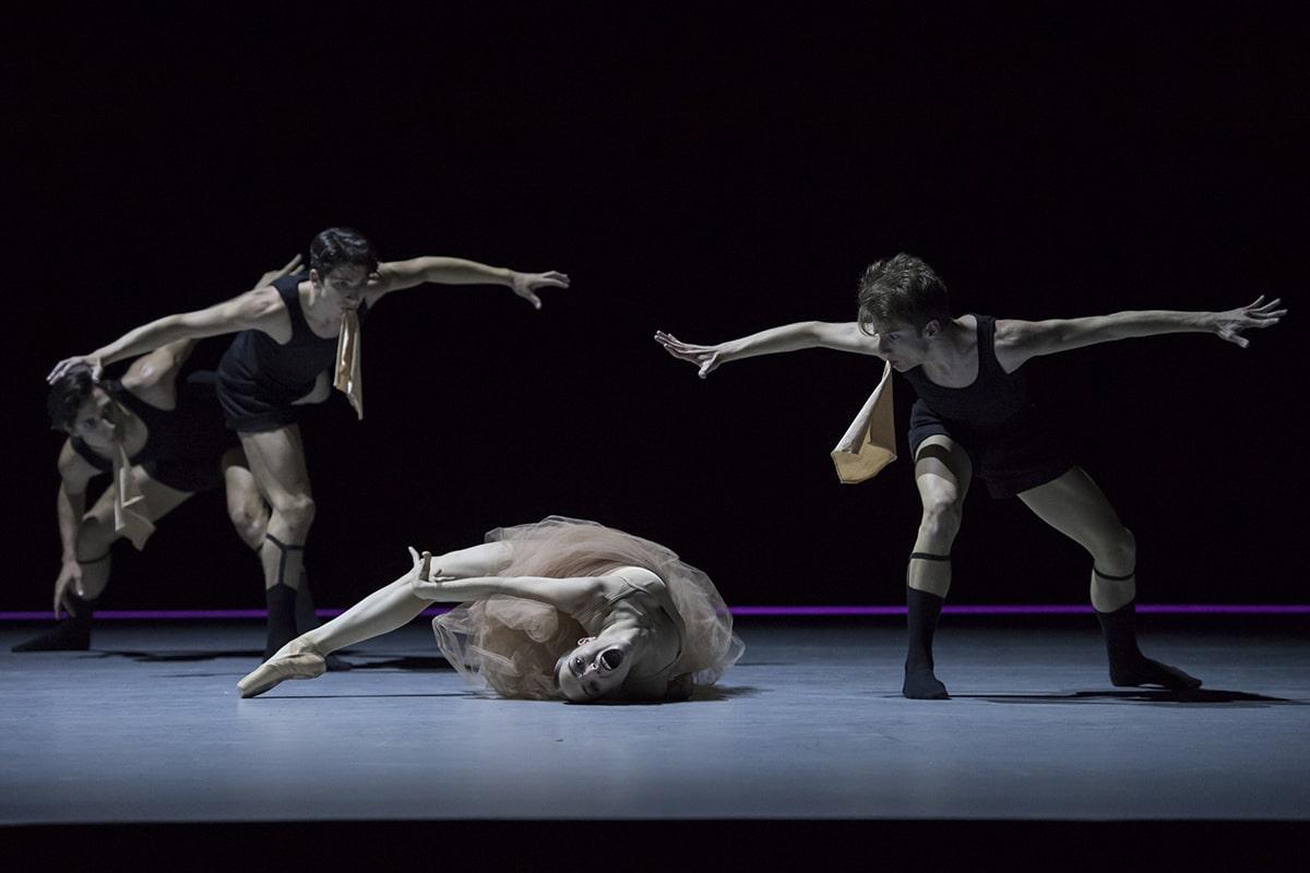 Chiasmus Jeroen Verbruggen pour pour académie de danse Princesse Grace 24
